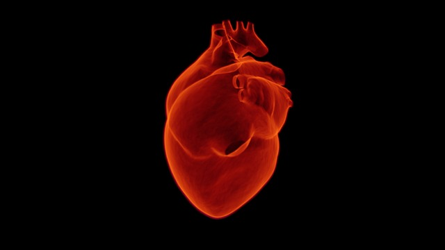 heart-1767552_640